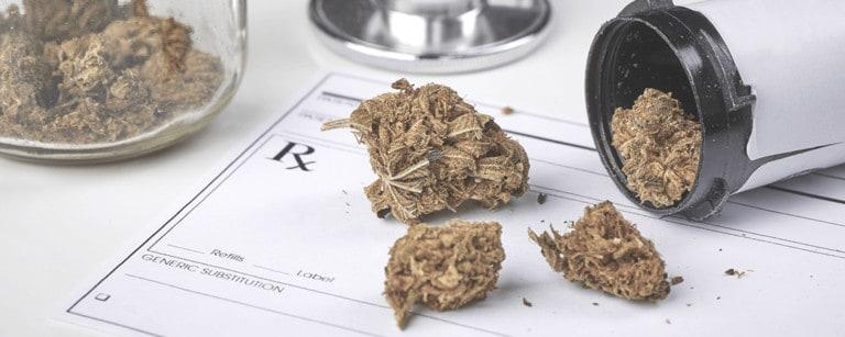 medyczna marihuana- charakterystyka leku